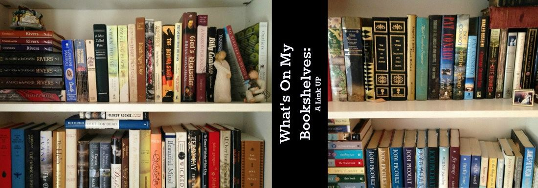 What's On My Bookshelves? A Link Up